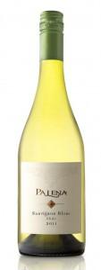 Palena Sauvignon Blanc-519